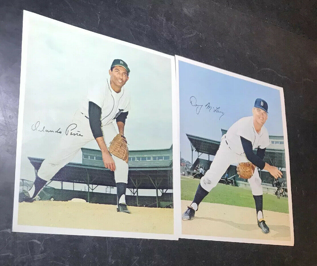 Lot of 12 Tiger Autographed 8X10 Color Tiger Prints KALINE BROWN MCCLAIN HOF  Без бренда