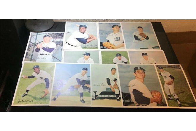 Lot of 12 Tiger Autographed 8X10 Color Tiger Prints KALINE BROWN MCCLAIN HOF