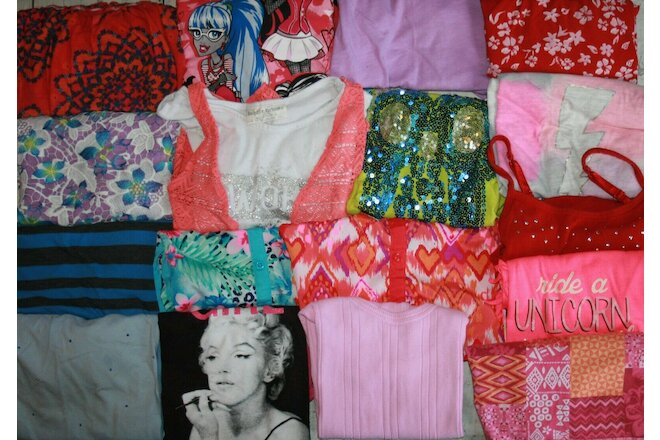 Nice Girls Size 10 & 10/12  Lot Of 17 Shirts