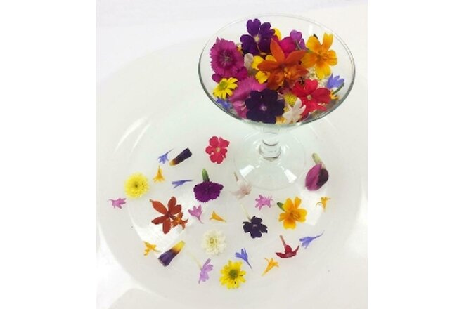FRESH EDIBLE FLOWERS; Tiny Mixed Organic, Overnight, Multi Colors, 200 Bulk