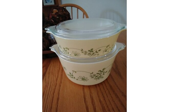 (2) Shenandoah PYREX Sets ~ 1 L. & 500 ml. ~ With Lids ~ Yellow w/ green floral